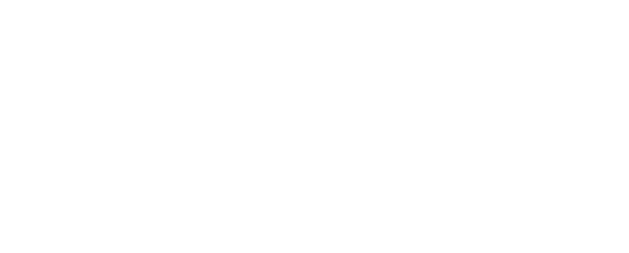 Chesters Real Estate